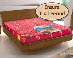 trial period