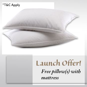 Launch offer - free pillow